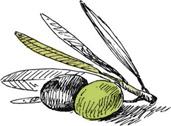 Agrocreta, The company profile
